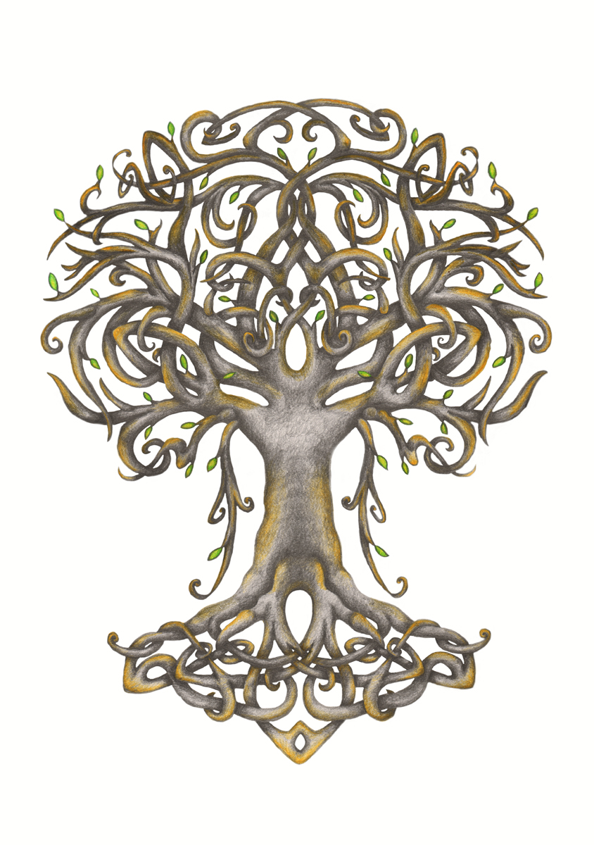 Yggdrasil Tattoo Design Viking Norse Tree of Life Knotwork Sleeve - Full Illustration - Graphite and Colour Pencil Drawing by Imogen Smid