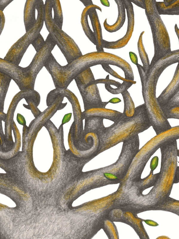 Yggdrasil Tattoo Design Viking Norse Tree of Life Knotwork Sleeve - Centre Trunk - Graphite and Colour Pencil Drawing by Imogen Smid
