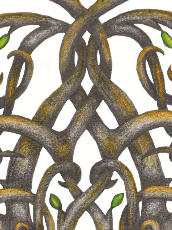 Yggdrasil Tattoo Design Viking Norse Tree of Life Knotwork Sleeve - Centre Branches - Graphite and Colour Pencil Drawing by Imogen Smid